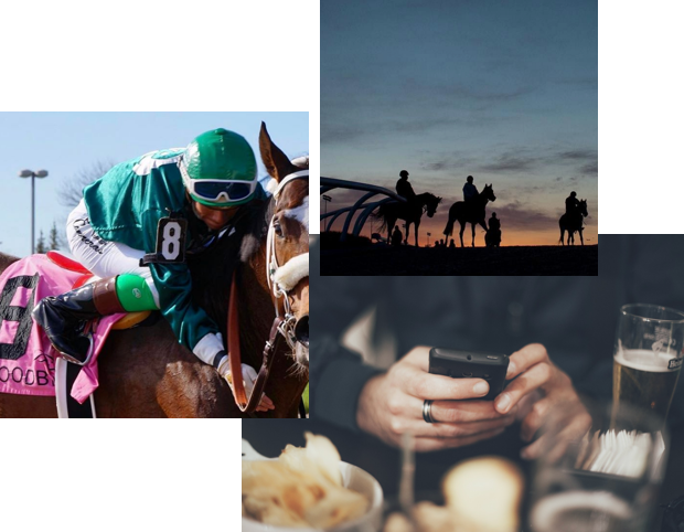 Collage of images with horse racing and people using their mobile phones to place bets.